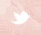 doityvette-watercolor-icon-twitter2
